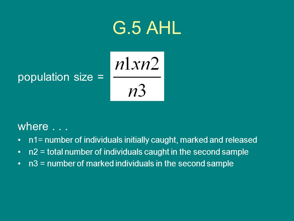 G.5 AHL population size = where . . .