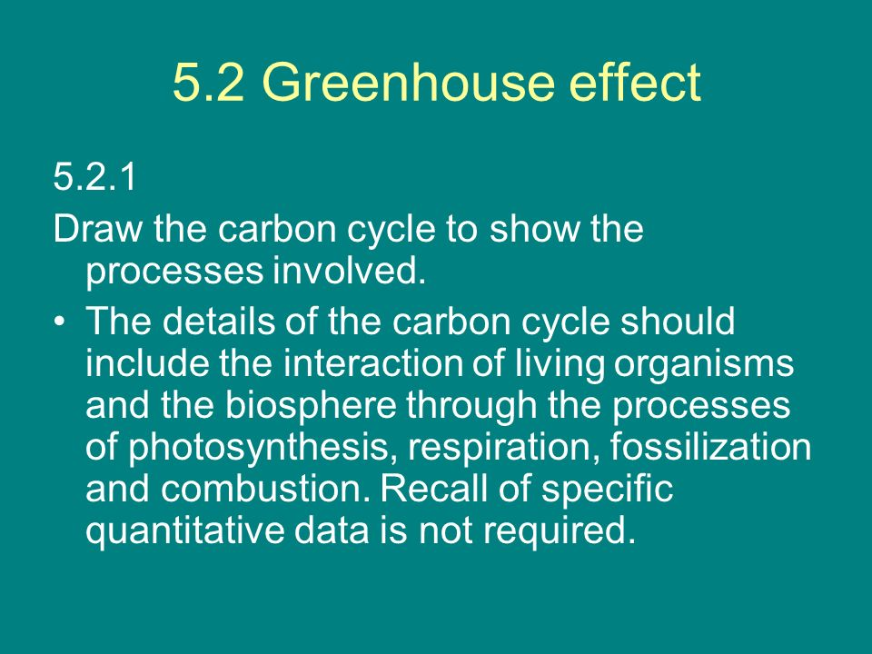 5.2 Greenhouse effect 5.2.1. Draw the carbon cycle to show the processes involved.