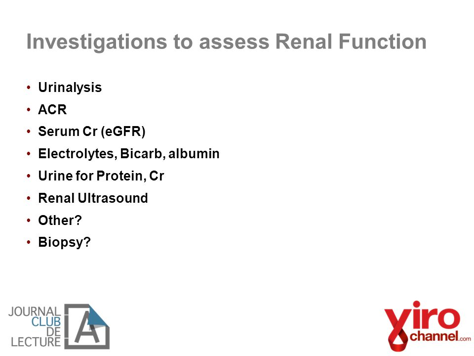 Investigations to assess Renal Function