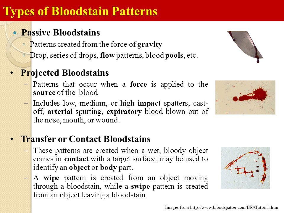 Types of Bloodstain Patterns