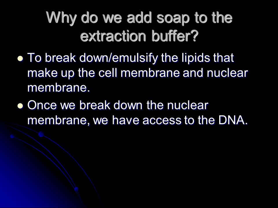 Why do we add soap to the extraction buffer