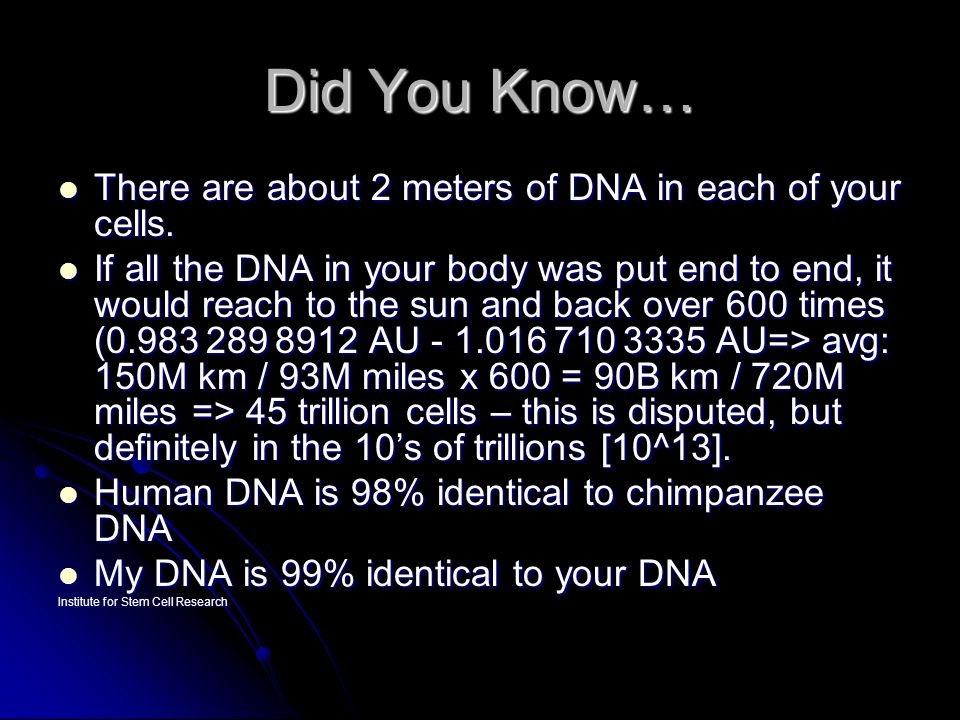 Did You Know… There are about 2 meters of DNA in each of your cells.