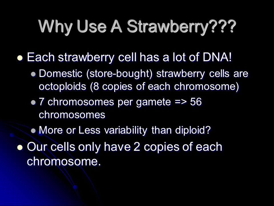 Why Use A Strawberry Each strawberry cell has a lot of DNA!
