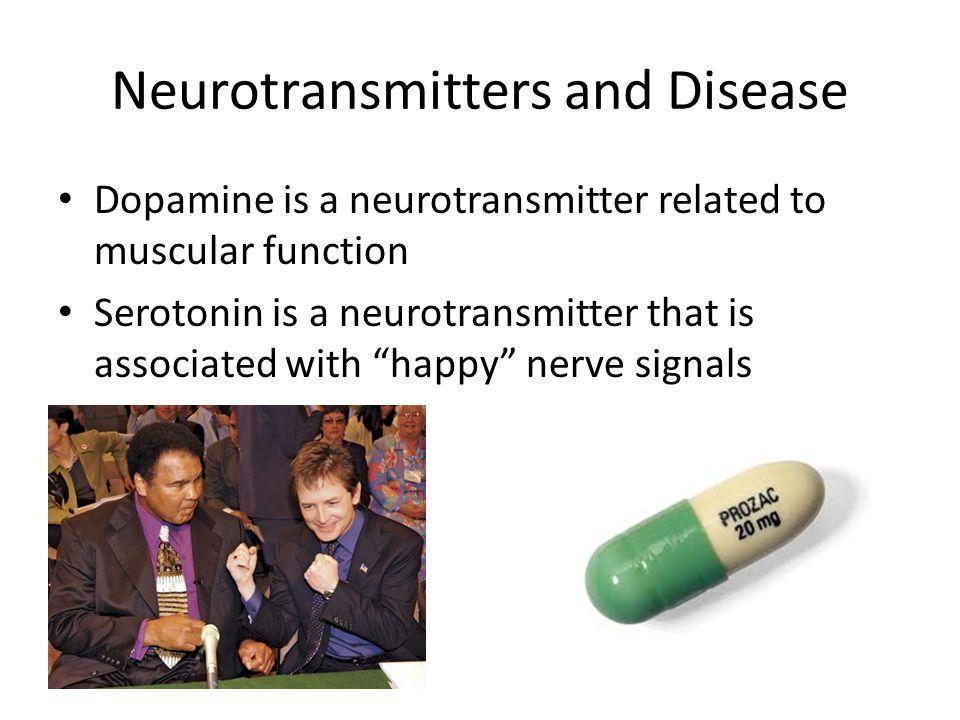 Neurotransmitters and Disease