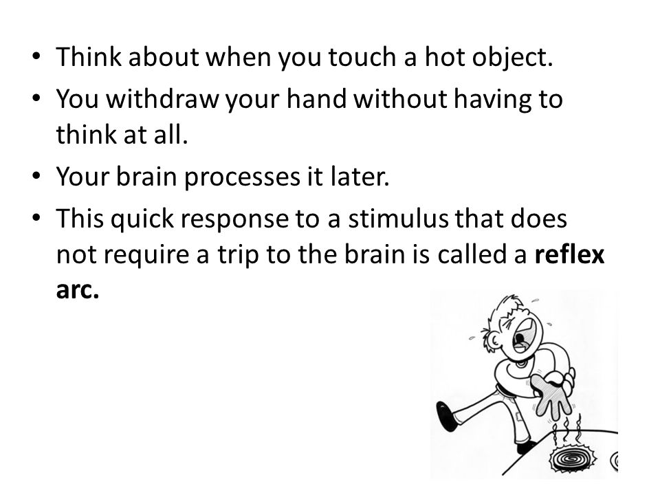 Think about when you touch a hot object.