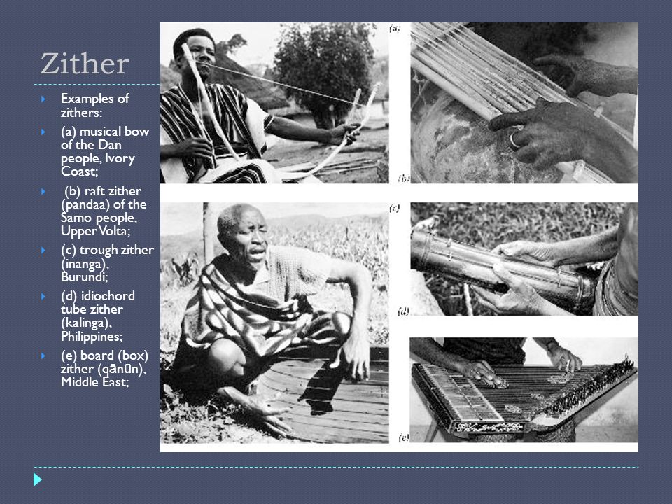 Zither Examples of zithers:
