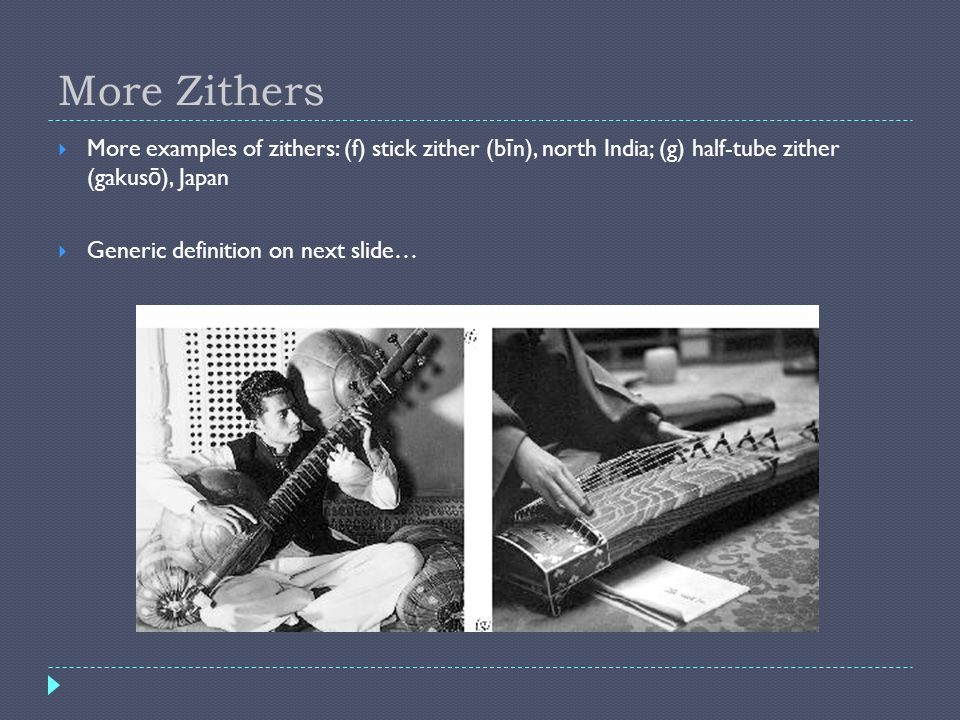 More ZithersMore examples of zithers: (f) stick zither (bīn), north India; (g) half-tube zither (gakusō), Japan.