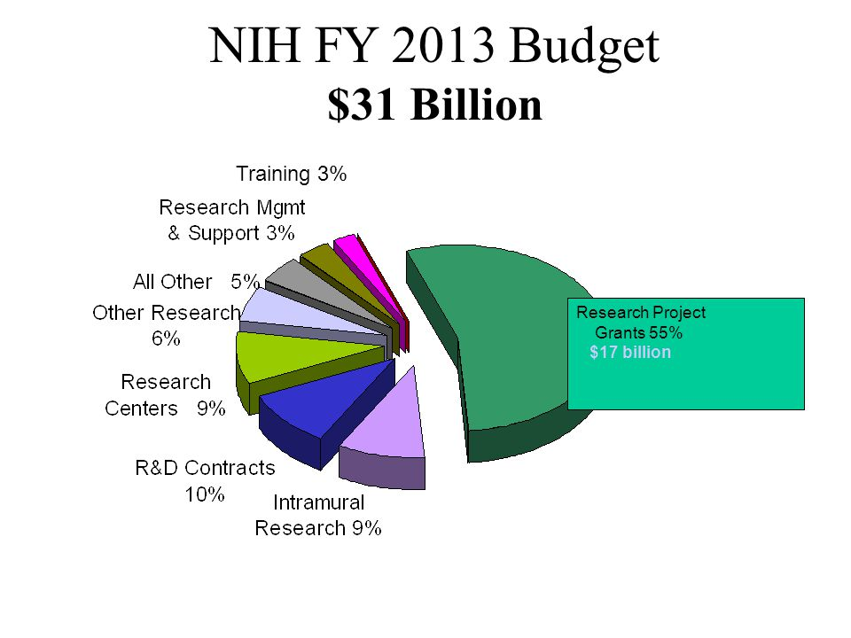 NIH FY 2013 Budget $31 Billion Training 3% Research Project Grants 55%