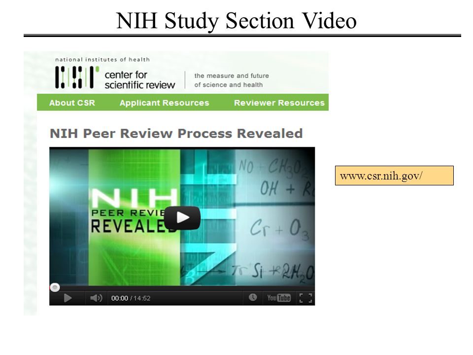 NIH Study Section Video