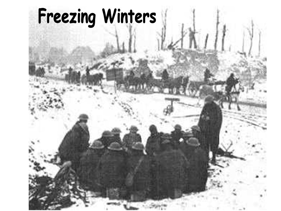 Freezing Winters