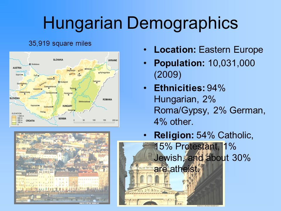 Hungarian Demographics