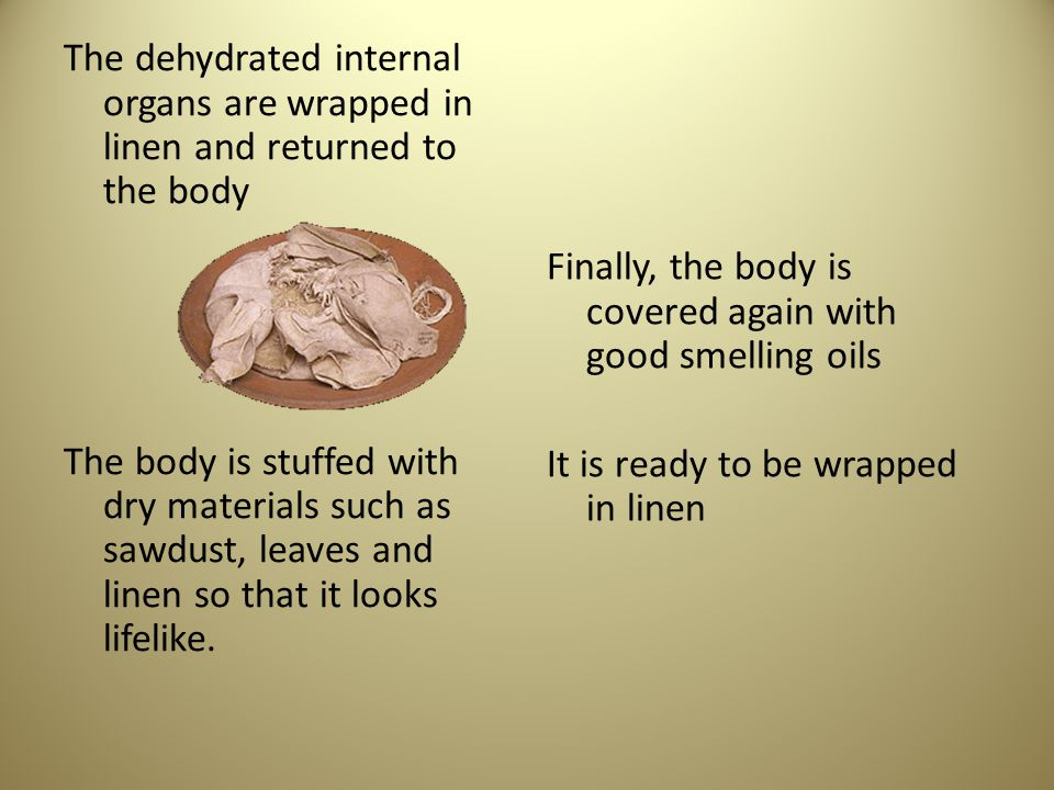 The dehydrated internal organs are wrapped in linen and returned to the body The body is stuffed with dry materials such as sawdust, leaves and linen so that it looks lifelike.