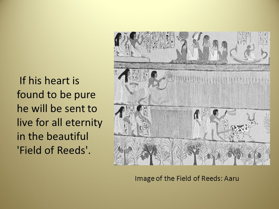 Image of the Field of Reeds: Aaru
