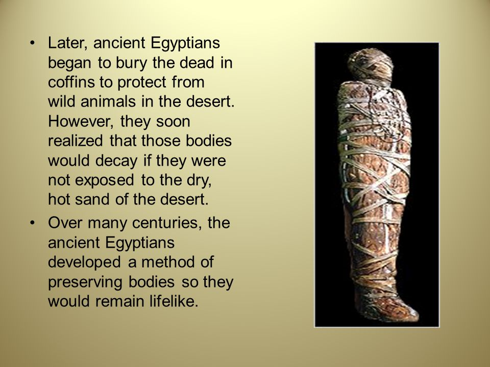 Later, ancient Egyptians began to bury the dead in coffins to protect from wild animals in the desert. However, they soon realized that those bodies would decay if they were not exposed to the dry, hot sand of the desert.