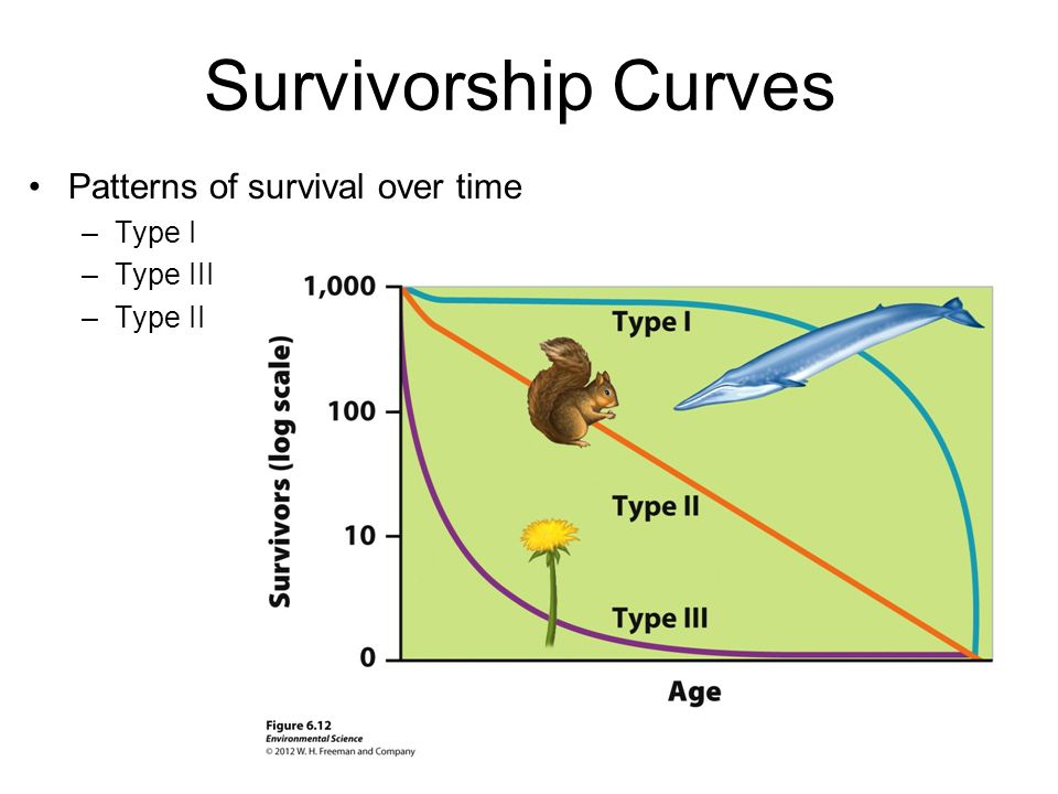 Survivorship Curves Patterns of survival over time Type I Type III