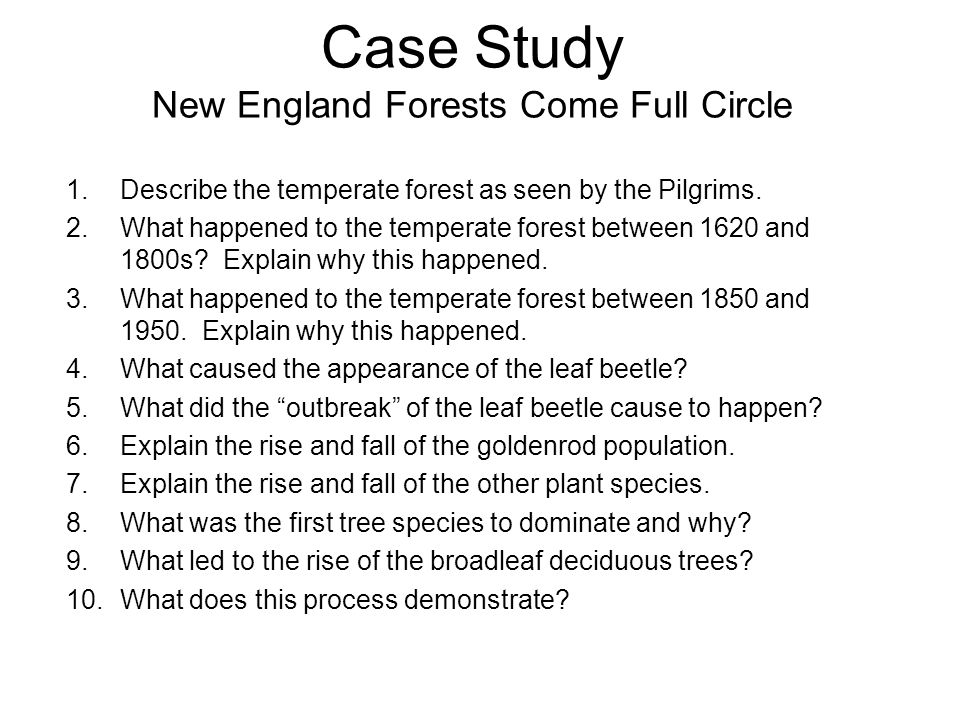 Case Study New England Forests Come Full Circle