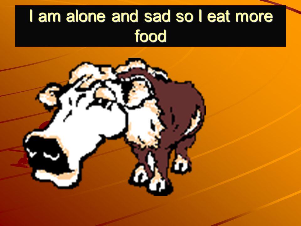 I am alone and sad so I eat more food