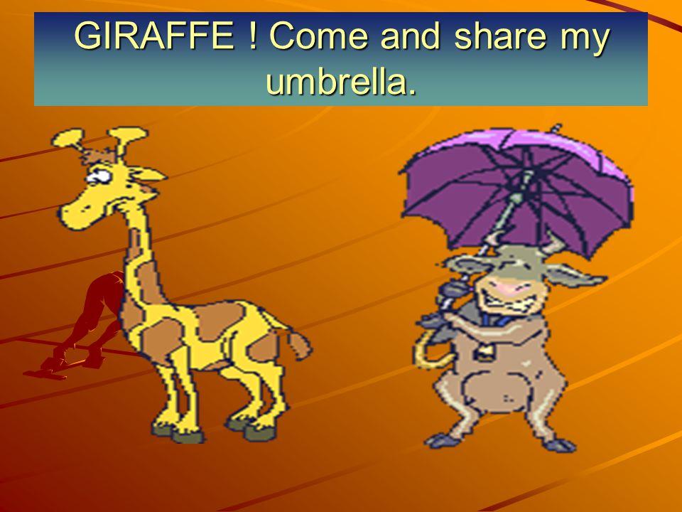 GIRAFFE ! Come and share my umbrella.