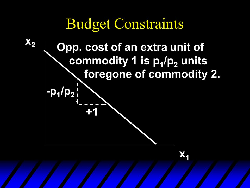 Budget Constraints x2. Opp. cost of an extra unit of commodity 1 is p1/p2 units foregone of commodity 2.