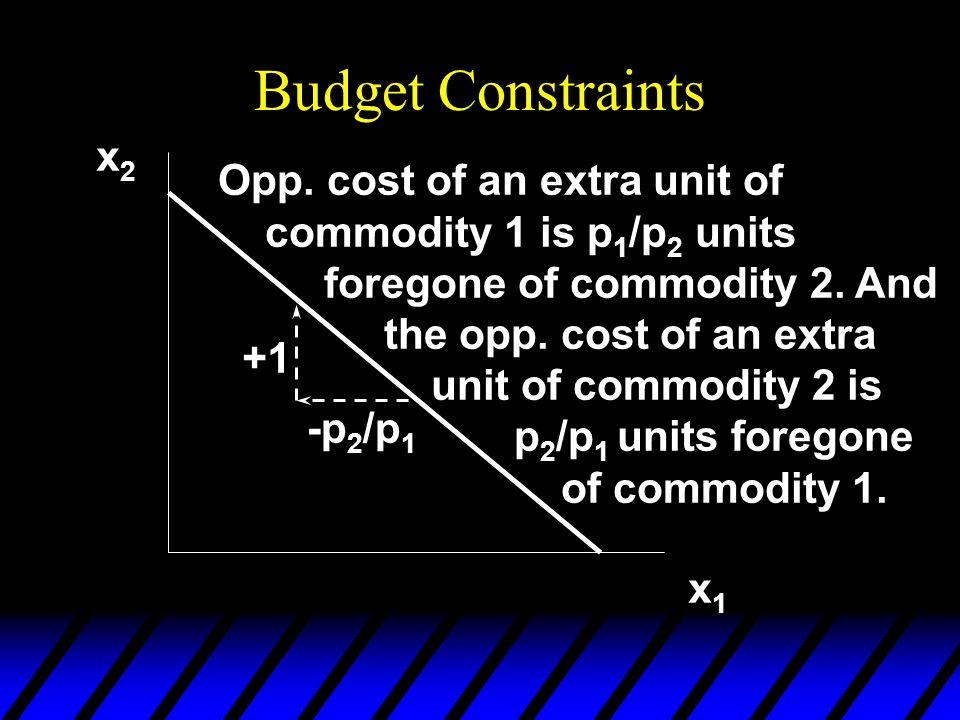 Budget Constraints x2.