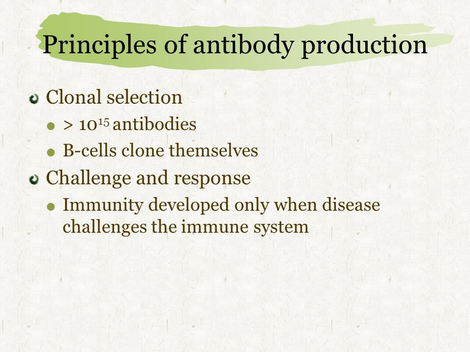 Principles of antibody production