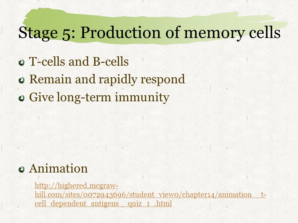 Stage 5: Production of memory cells