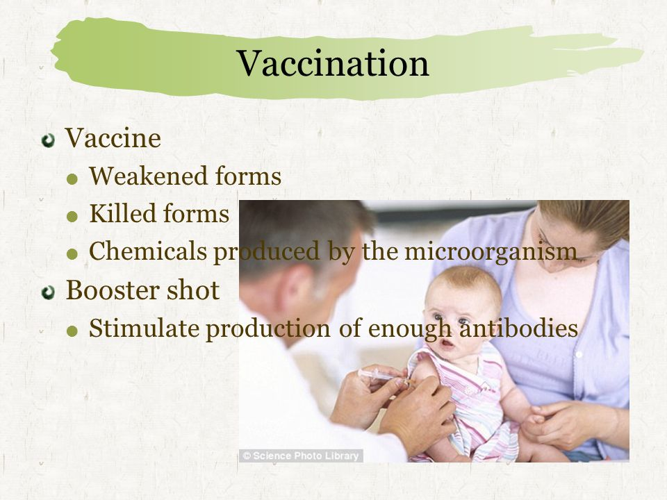 Vaccination Vaccine Booster shot Weakened forms Killed forms