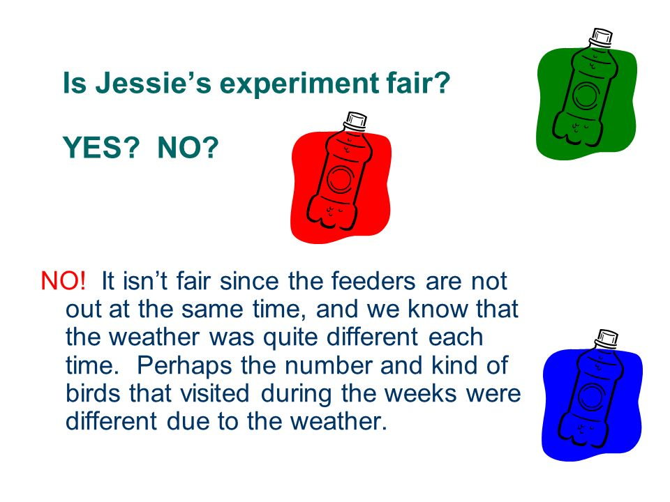Is Jessie's experiment fair YES NO