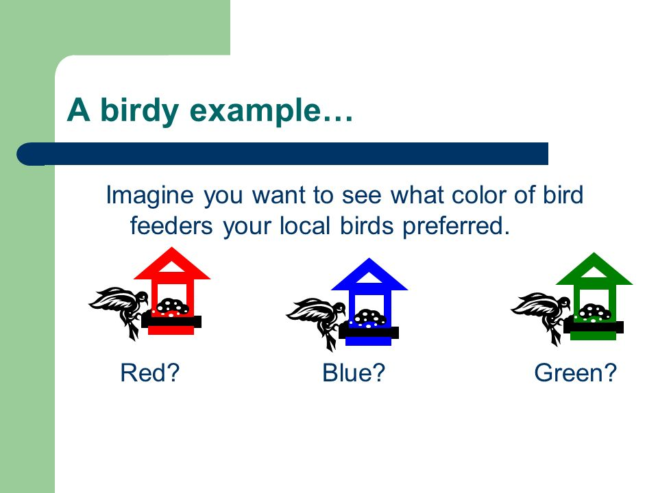 A birdy example… Imagine you want to see what color of bird feeders your local birds preferred. Red Blue Green