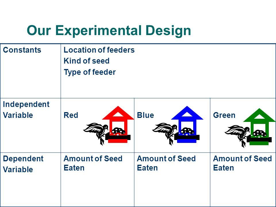 Our Experimental Design