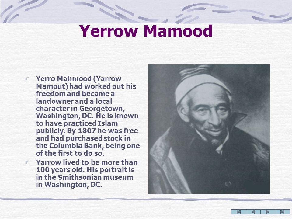 Yerrow Mamood