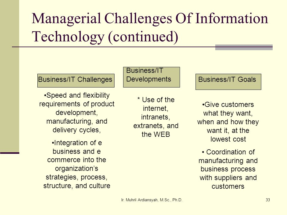 Managerial Challenges Of Information Technology (continued)