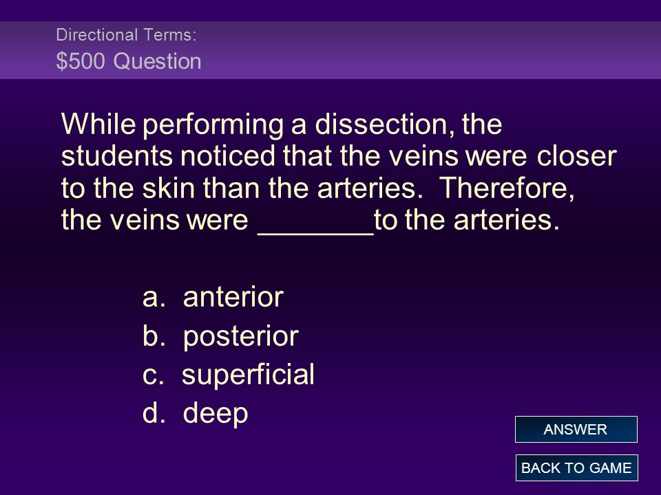 Directional Terms: $500 Question