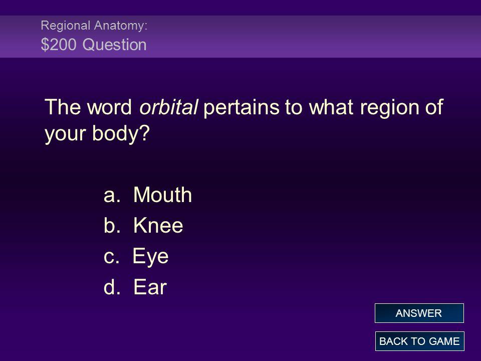 Regional Anatomy: $200 Question