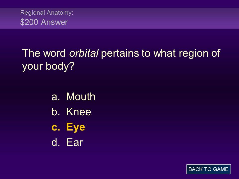 Regional Anatomy: $200 Answer