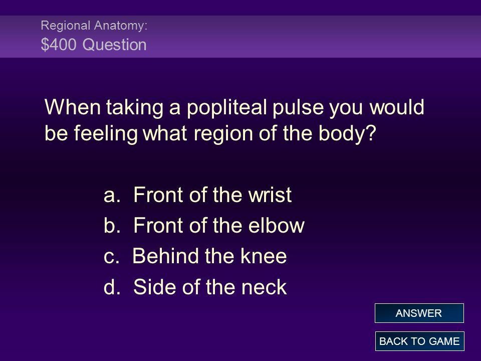 Regional Anatomy: $400 Question