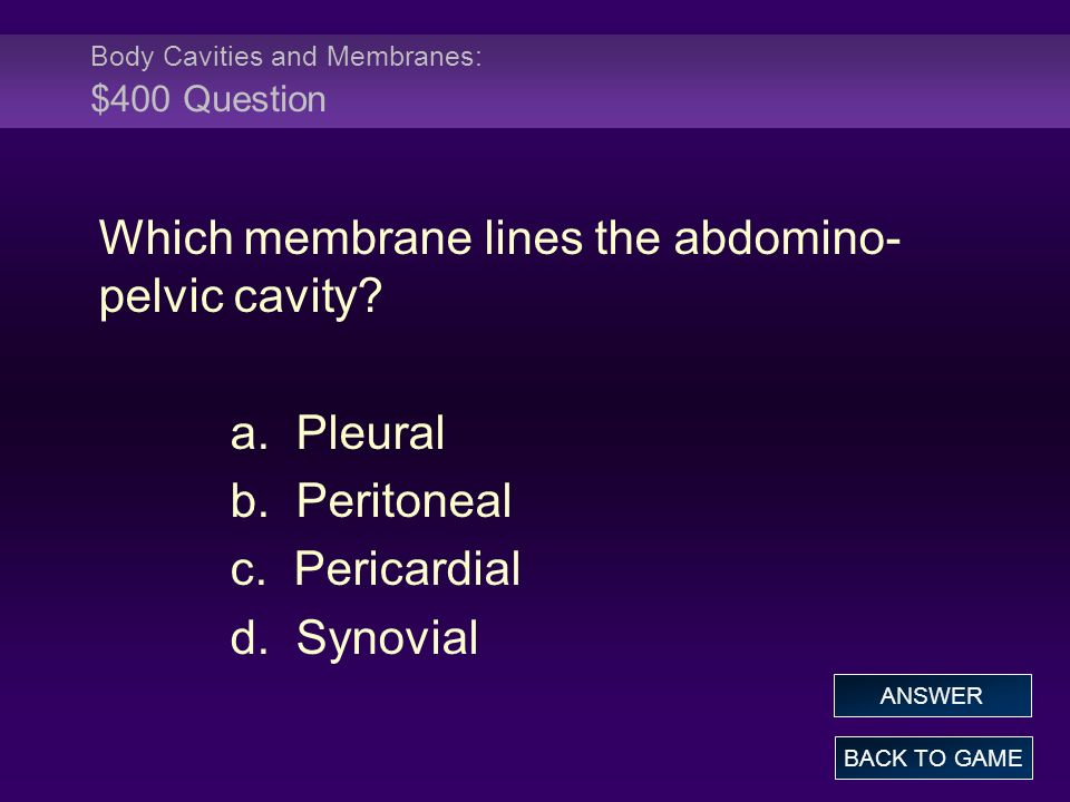 Body Cavities and Membranes: $400 Question