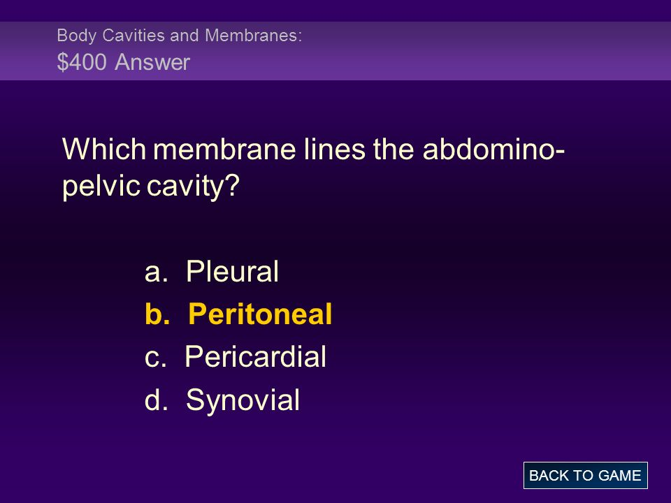 Body Cavities and Membranes: $400 Answer