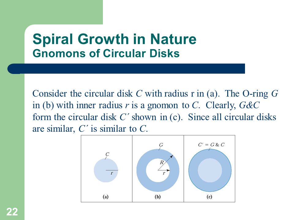 Spiral Growth in Nature Gnomons of Circular Disks