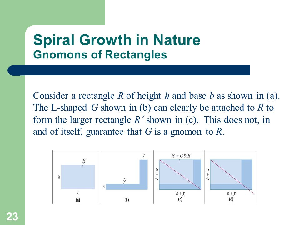 Spiral Growth in Nature Gnomons of Rectangles