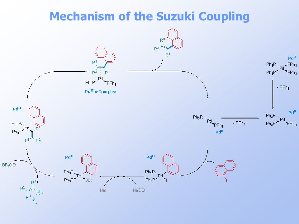 Mechanism of the Suzuki Coupling