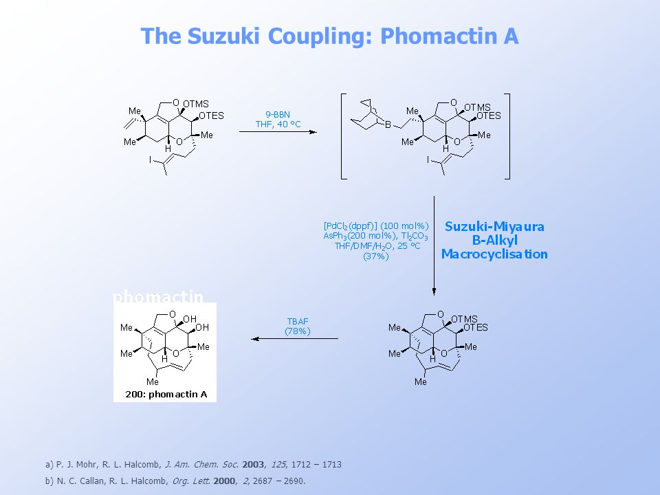 The Suzuki Coupling: Phomactin A