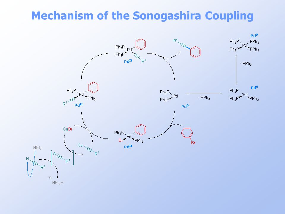 Mechanism of the Sonogashira Coupling