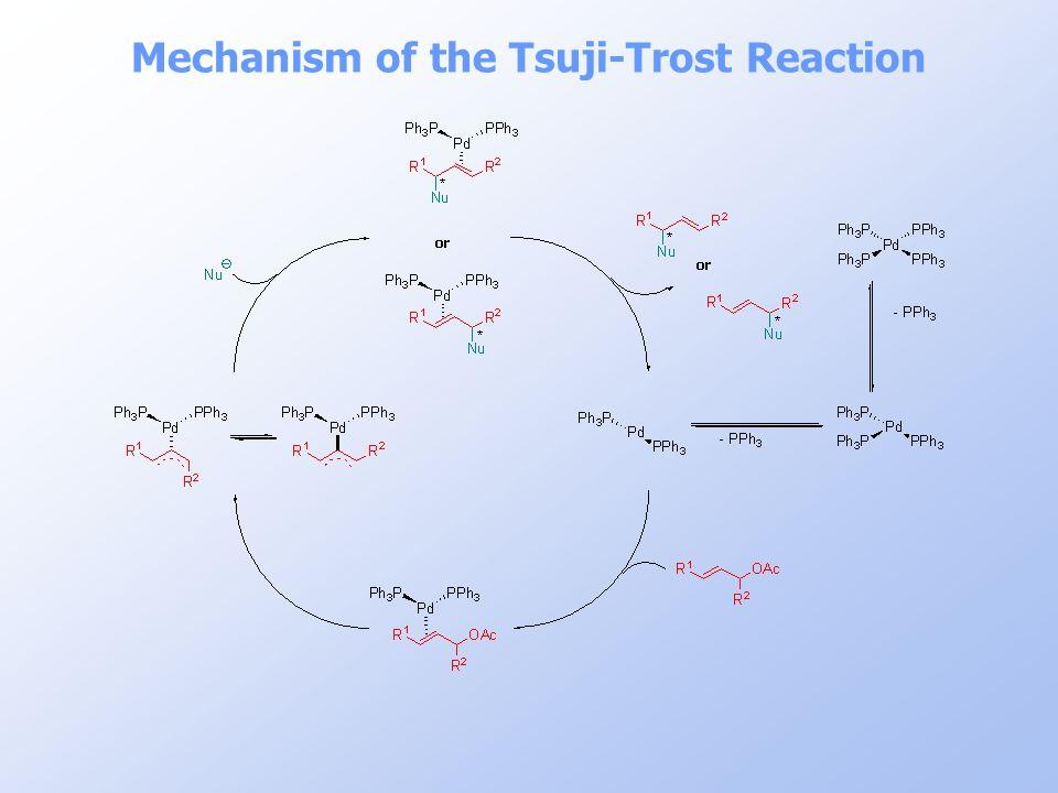 Mechanism of the Tsuji-Trost Reaction