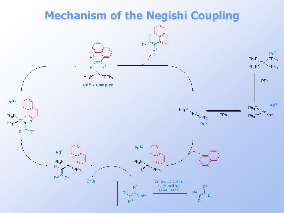 Mechanism of the Negishi Coupling