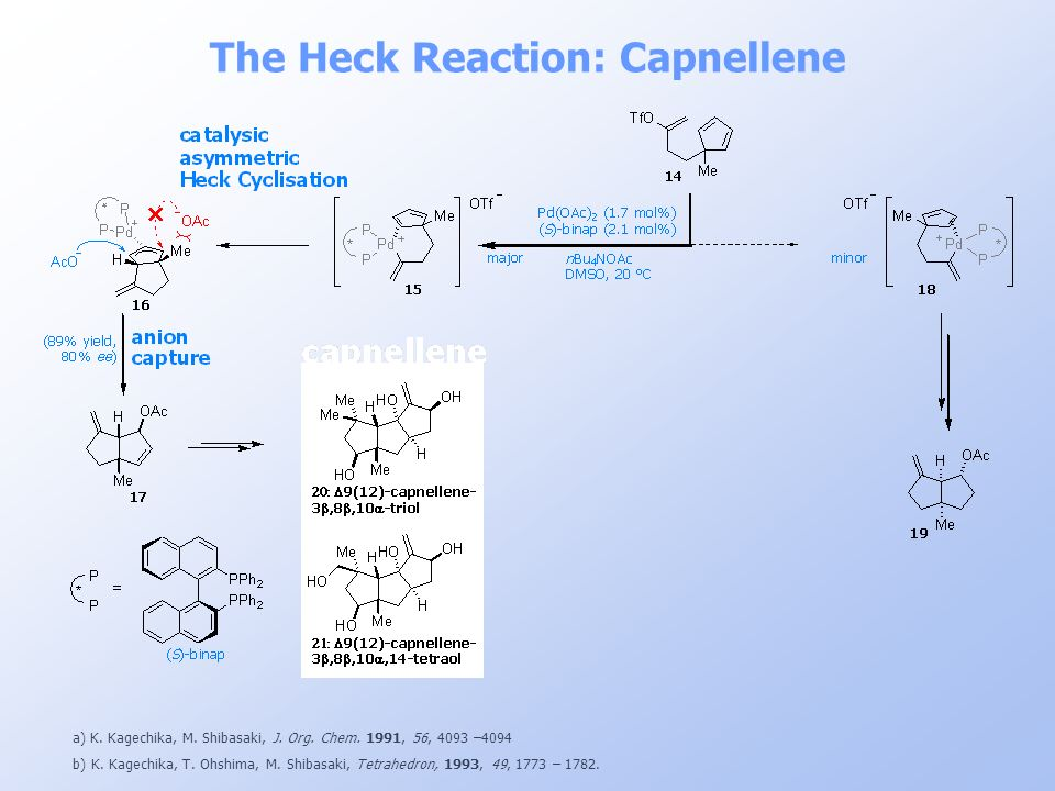 The Heck Reaction: Capnellene