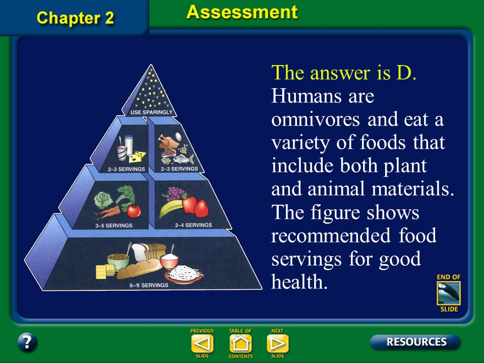 The answer is D. Humans are omnivores and eat a variety of foods that include both plant and animal materials. The figure shows recommended food servings for good health.