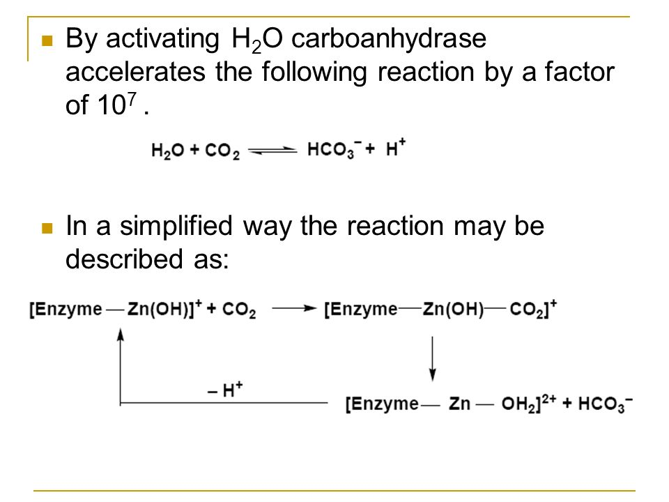 By activating H2O carboanhydrase accelerates the following reaction by a factor of 107 .