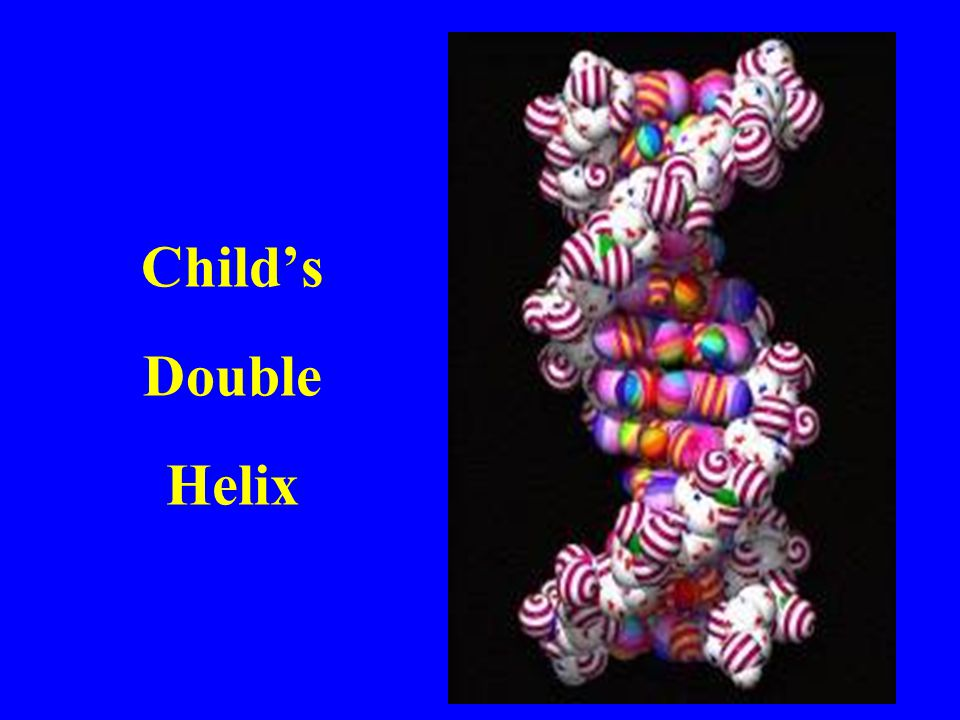 Child's Double Helix