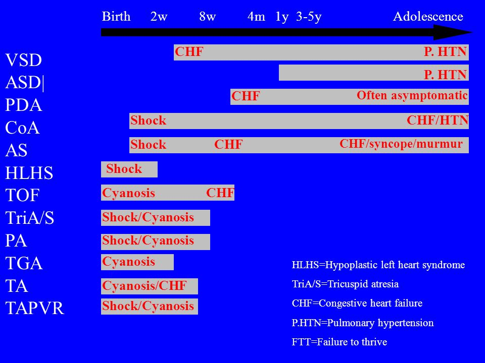Birth 2w 8w 4m 1y 3-5y Adolescence VSD ASD| PDA CoA